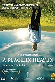 A Place in Heaven (2013)