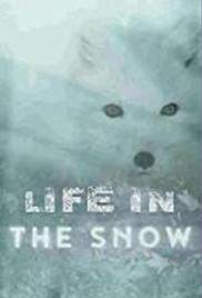 Life in the Snow (2016)