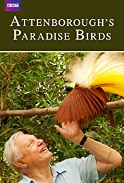 Attenboroughs Paradise Birds (2015)