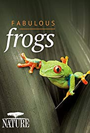 Fabulous Frogs (2014)