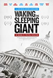 Waking the Sleeping Giant: The Making of a Political Revolution (2017)