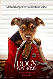 Watch Full Movie :A Dogs Way Home (2019)