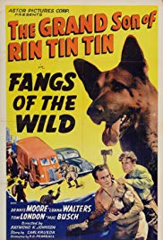 Fangs of the Wild (1939)