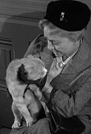 Miss Paisleys Cat (1957)